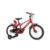 Bicicletta bambino gfm